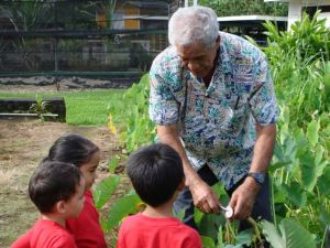 Learning in Nāwahī's garden (photograph courtesy of Nāwahī LaboratorySchool)
